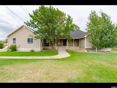 Wellsville Single Family Home For Sale: 1202 S 200 E