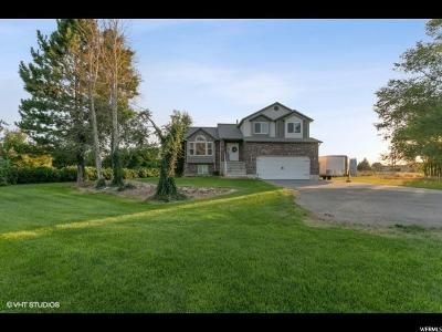 Weber County Single Family Home For Sale: 3933 W 3600 N