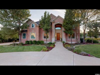 Alpine Single Family Home Under Contract: 245 N Matterhorn Dr