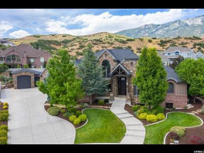 Alpine Single Family Home For Sale: 1285 N Heritage Cir