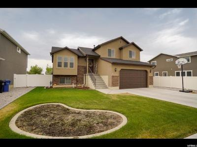 Weber County Single Family Home Under Contract: 915 W Willowbrook Ln