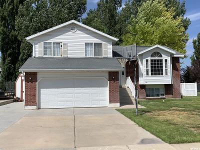 Davis County Single Family Home For Sale: 1951 N 950 W