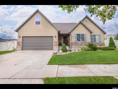Payson Single Family Home For Sale: 263 S 1200 E