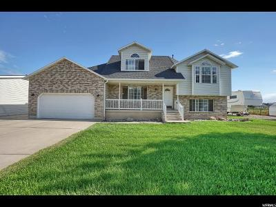 Weber County Single Family Home For Sale: 4887 W 3450 S