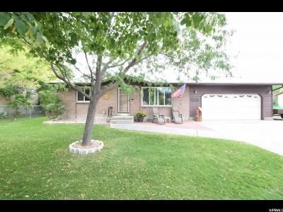 Riverton Single Family Home For Sale: 13078 S 2050 St W