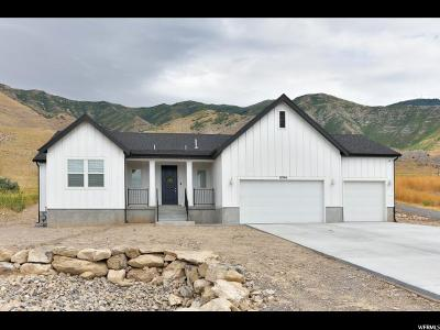 Tooele County Single Family Home For Sale: 8594 N Iron Horse Dr