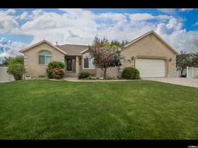 Payson Single Family Home For Sale: 1458 S 400 W