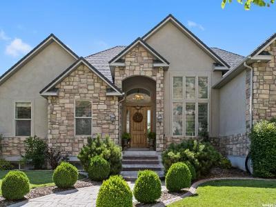 Provo Single Family Home Under Contract: 317 N 1340 E