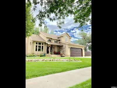 Nephi Single Family Home Under Contract: 563 E 200 N