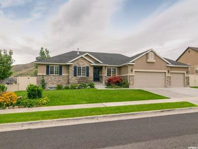 Herriman Single Family Home Under Contract: 6621 W Desert Lily Cir