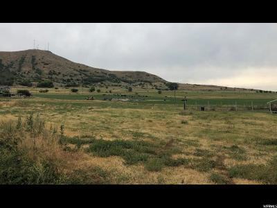 Smithfield Residential Lots & Land For Sale: 7830 N Highway 91