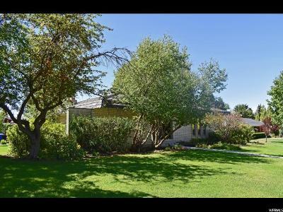 Single Family Home For Sale: 1696 E 1185 N