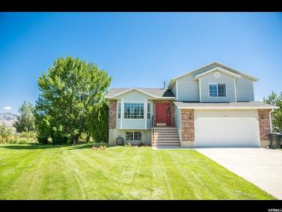 Nibley Single Family Home For Sale: 543 W 2700 S