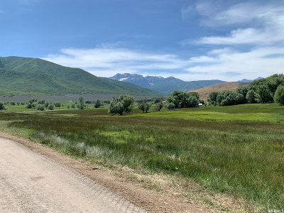 Wasatch County Residential Lots & Land For Sale: 1570 W Main Canyon Rd