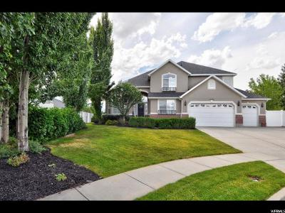 South Jordan Single Family Home For Sale: 10256 S Sage Spring Cir W