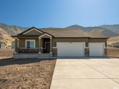 Tooele County Single Family Home For Sale: 8272 N Lakeshore Dr E #723