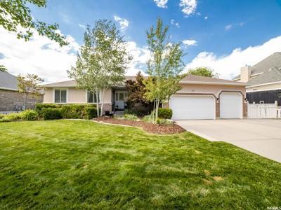 Draper Single Family Home For Sale: 1151 E Hackamore Dr S