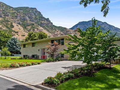 Provo Single Family Home For Sale: 3140 Huron Way