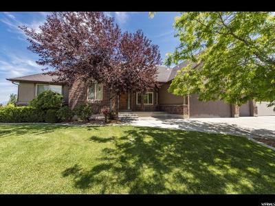 Herriman Single Family Home Under Contract: 14357 S Long Rdg W
