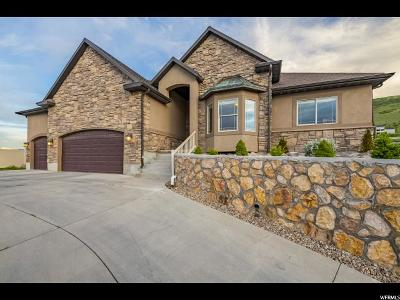 Herriman Single Family Home For Sale: 6109 W Cabin Trail Way Way