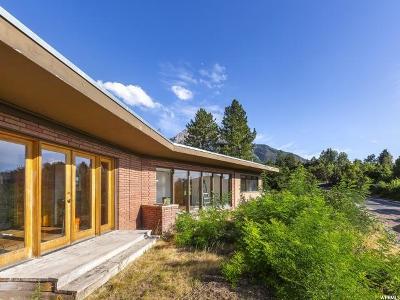 Salt Lake City Single Family Home For Sale: 3821 S Parkview E