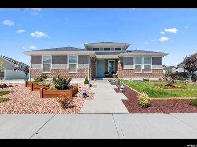 Springville Single Family Home For Sale: 1106 S 750 W