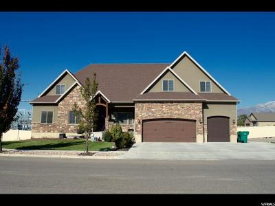 Lehi Single Family Home For Sale: 954 W 1400 S