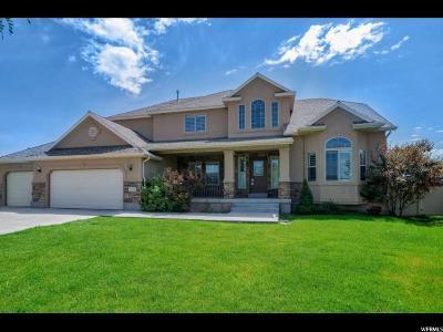 Lehi Single Family Home For Sale: 3302 N Love Ln E
