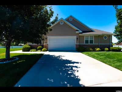 American Fork Single Family Home For Sale: 343 N 1060 East Cir #38