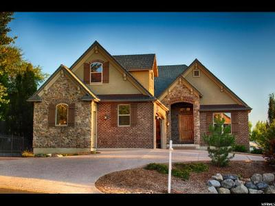 Providence Single Family Home For Sale: 754 E Center St