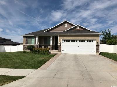 Single Family Home For Sale: 693 S 180 E