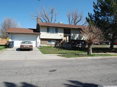American Fork Single Family Home For Sale: 384 W 300 S