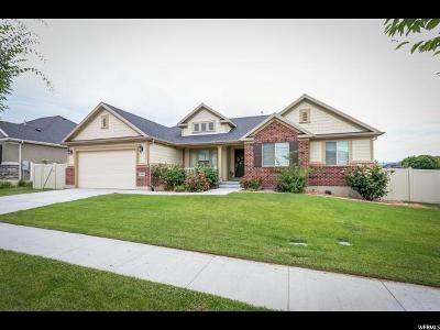 Lehi Single Family Home For Sale: 711 W Sandhill Dr