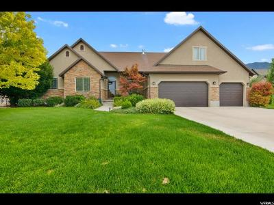 Mapleton Single Family Home Under Contract: 1902 N 800 W