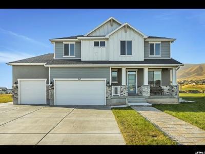 Saratoga Springs Single Family Home For Sale: 217 E Sandhill Dr