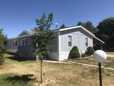 Single Family Home For Sale: 439 W 725 N