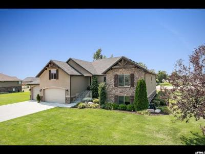 Weber County Single Family Home For Sale: 2583 N 3350 W