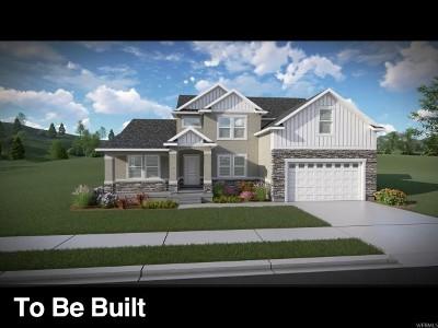 Eagle Mountain Single Family Home For Sale: 4919 N Brandon Park Dr #324