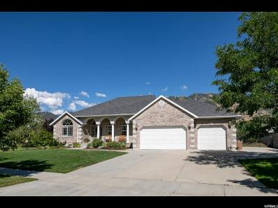 Draper Single Family Home For Sale: 13157 S Ptarmigan Gate Rd E