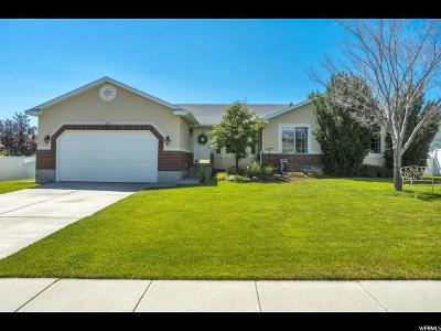 West Jordan Single Family Home For Sale: 5143 W 8820 S