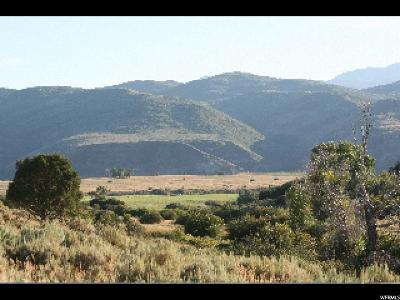 Wasatch County Residential Lots & Land For Sale: 10030 N Unita Dr
