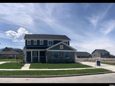 Springville Single Family Home For Sale: 849 W 1000 S #5