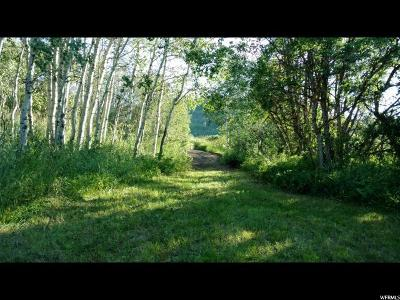 Wasatch County Residential Lots & Land Under Contract: 9777 E Clubhouse Rd
