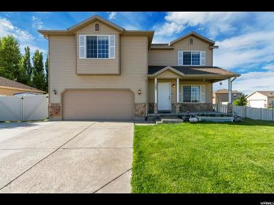 Eagle Mountain Single Family Home For Sale: 1302 E Spring Water Way