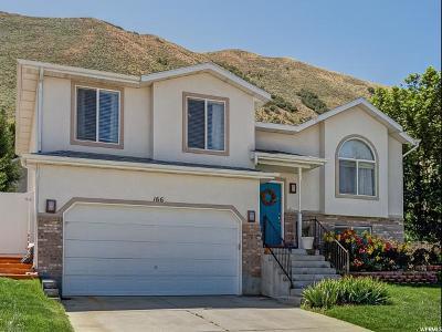 Draper Single Family Home Under Contract: 166 E Steep Mountain Dr