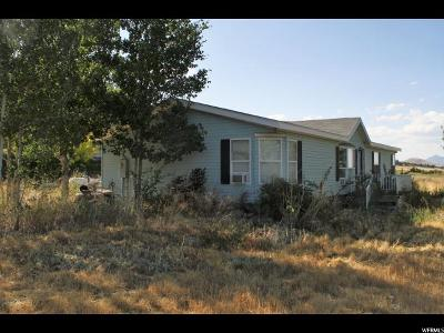 Wellsville Single Family Home For Sale: 5335 W 3400 S