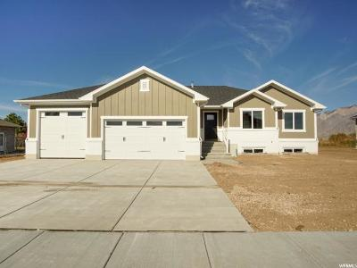 Weber County Single Family Home For Sale: 4120 W 2875 N