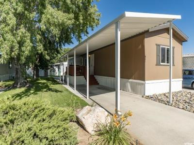 Weber County Single Family Home For Sale: 3800 S 1900 W #81
