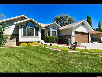 Tooele County Single Family Home For Sale: 41 Lakeview