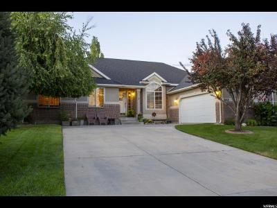 Salt Lake County Single Family Home For Sale: 3152 W Ivory Way S #204